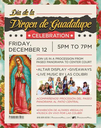 12-12-2014 VIRGEN de GUADALUPE