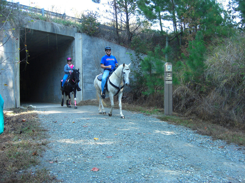 """<a href=""""http://www.flickr.com/people/lalouque/ """">Photo Credit</a>  The American Tobacco Trail is a 22 mile Rail-Trail that runs from Durham south to Apex, North Carolina on the former Norfolk Southern Railroad line. The name of the trail reflects the main cargo of the railroad which was built in 1906. The northern section of the trail is paved but some of the southern sections are largely grass or clay. South of I-40 and Massey Chapel Road, the trail opens up to equestrian use and winds through piney woods and neighborhoods. The trail offers the chance to view lots of wildlife including beavers, herons, hawks, songbirds, vultures, squirrels, owls, and deer.  The Rail-Trail was funded through 8 separate Transportation Enhancement projects from 1996-2006. In total $2.6 million in TE funding was awarded for the construction of the trail with another $650,000 in local match funds. The trail was completed in early 2012. For more information on the trail, please visit the Triangle Rails-to-Trails Conservancy."""