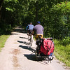 "<a href=""http://www.flickr.com/photos/jasonpratt/"">Photo Credit</a>  With 100 continuous miles of trail open in Pennsylvania from McKeesport to Meyersdale and an additional twenty miles scattered throughout the Pittsburgh area, the <a href=""http://www.atatrail.org/"">Great Allegheny Passage</a> is the longest multi-purpose rail-trail in the East. The rail-trail offers a total of 150 miles of non-motorized, nearly level trail between Cumberland, Maryland and Pittsburgh, Pennsylvania with a 52-mile spur to Pittsburgh International Airport. At Cumberland, the Passage will link with the Chesapeake & Ohio Canal Towpath, creating a 300-mile off-road route between Pittsburgh and Washington, DC. The Great Allegheny Passage allows hikers, bicyclists, cross-country skiers and people with disabilities the opportunity to discover the region's spectacular river gorges, mountain vistas and sweeping cityscapes. The Passage leads travelers through the Allegheny Mountains making use of refurbished railroad bridges and tunnels on their journey along waterways, unique rock formations, and wildlife areas. The trail was completed with the help of a $4 million TE grant. A public-private partnership between the Pennsylvania Department of Transportation and the <a href=""http://www.atatrail.org/"">Allegheny Trail Alliance</a> (a coalition of seven trail organizations in Southwestern Pennsylvania and Western Maryland), manages this comprehensive project and has significantly contributed to the project's success."