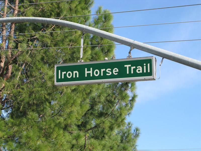 The Iron Horse Regional Trail connects two counties and 12 cities along 33 miles of the Southern Pacific Railroad right-of-way.  Between 1997 and 2002, $3,107,000 in TE funds financed trail expansion and infrastructure, including under- and over-passes.  The Iron Horse Regional Trail is open to pedestrians, bicyclists, and equestrians.  The trail is a popular route for commuters as well as school children.  It is convenient to a Bay Area Rapid Transit (BART) station, bus stops, and park-and-ride facilities.  The trail passes through commercial areas that have benefited from the establishment of the trail.  Restaurants, ice cream parlors, and bicycle and sporting goods stores have specifically located themselves alongside the trail.  Many businesses now include bicycle parking in support of the trail.  The Iron Horse Regional Trail provides thousands of citizens an alternative way to travel while serving as a linear park and greenway providing habitat for wildlife.