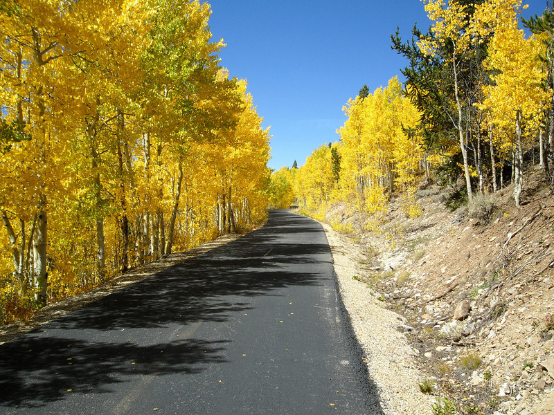 """<a href=""""http://www.flickr.com/photos/emwendelin/"""">Photo Credit</a>  At 10,400 feet above sea level, the Mineral Belt Trail is one of the highest paved rail-trails in the country. The Mineral Belt Trail was a challenge to developers because it is located within a Superfund site, a national historic district, a mining district with overlapping claims and an area of high topographic relief, all of this in a small community with limited financial resources. In July 2000, seven years after the trail's groundbreaking, Leadville officially opened the Mineral Belt Trail, a 12.5-mile rail-trail through the city, linking schools and amenities. The successful completion of the trail was the result of strong partnerships between the Union Pacific Railroad Company, Colorado State Parks, Colorado Department of Transportation, U.S. Environmental Protection Agency, Asarco Mine, Leadville, Lake County and private landowners. Interesting features of the trail include the safe and legal access it provides to historic mining areas, panoramic views of Colorado's three highest peaks, including Mount Elbert, the highest mountain in Colorado, and the trail's use, sanctioned by the EPA, as an impervious cap over the old railroad corridor."""