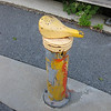 "This charming bike seat bollard prevents cars from using the trail.  The <a href=""http://www.minutemanbikeway.org"">Minuteman Bikeway</a> is an 11-mile rail-trail that connects Cambridge with Bedford, passing through Lexington and Arlington. This project converted an abandoned railroad, which provided passenger and freight service from 1846 to 1981 (Passenger service discontinued in 1977), into a multi-use bikeway. Over $2 million in federal TE funds were awarded to four projects that leveraged a total local match of nearly $530,000 to construct portions of the trail.   Connecting to the Alewife T Station in Cambridge, this bikeway serves as a regional connector providing pedestrians and bicyclists with access to subway and bus service. In addition, plowing in the winter makes the rail-trail accessible year-round. The Rails-to-Trails Conservancy inducted the Minuteman Bikeway into the national <a href=""http://www.railstotrails.org/ourWork/promotingTrailUse/trailRecognition/hallOfFame/index.html"">Rails-Trail Hall of Fame</a> in 2008. An interactive Google Map is available <a href=""http://maps.google.com/maps/ms?msa=0&msid=109226583957077835668.000465e72b5c80776ecd6&cd=20&geocode=FdjhgwIdyKe_-w&sll=41.524545,-73.895818&sspn=2.569111,6.049236&hl=en&ie=UTF8&ll=42.440434,-71.218529&spn=0.176595,0.308647&z=12"">here</a>."