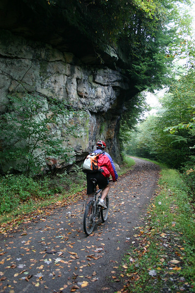 "<b>Photo Courtesy of Daniel Boyd</b>  Recreational opportunities abound in northern West Virginia, an area known for its scenic mountains and river valleys. Recognizing the value of recreation in the region, a nonprofit group, the <a href=""http://www.montrails.org/"">Mon River Trails Conservancy</a> (MRTC), formed in 1991 to acquire an abandoned CSX rail corridor and convert it to a trail. Working with a coalition of business organizations, government entities, and a local philanthropist, the group used TE funds to purchase and develop a 51-mile segment of abandoned rail corridor in 1996. Hugging the Monongahela River, the trail winds through three counties and several towns. North and south of the city of Morgantown, home of West Virginia University, the crushed limestone trail is called the Mon River Trail. Within Morgantown, an eight-mile paved segment known as the Caperton Trail provides access to riverfront parks, an amphitheatre, and the 90-acre Core Arboretum. East of Morgantown, the trail splits into the Decker's Creek Trail. The Mon River/Caperton/Decker's Creek Trail system augments the region's recreational opportunities, provides pedestrian and bicycle access to key destinations, and has helped to spur economic revitalization along the Monongahela River, including new businesses and a downtown hotel and conference center."