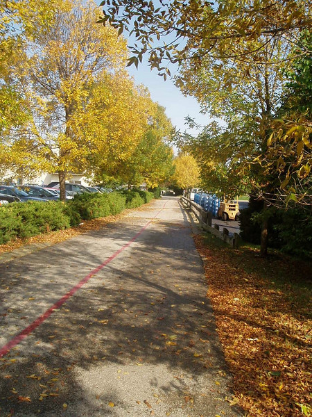 """<a href=""""http://www.flickr.com/photos/kimmanleyort/344883734/sizes/l/in/photostream/"""">Photo Credit</a>  The Monon Trail or Monon Greenway as it is known locally is a 15.7 mile rail-trail stretching from Indianapolis to Carmel, Indiana. The trail sees about 1.3 million users a year and is a highly valued amenity among local citizens. Access to arts and entertainment is one of the highlights of the trail. The Indianapolis Art Center in Broad Ripple Village, Marott Park and Nature Preserve, Indiana State Fairgrounds, and the brand new Palladium at the Center for Performing Arts in Carmel are all easily accessible from the trail. Federal investment in the trail totals nearly $7,000,000 and has been matched by close to $4,700,000 in local funds. The asphalt trail connects many communities throughout the region and has been a significant economic boost for the local economy."""