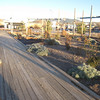 """The <a href=""""http://www.railyardsantafe.com/rails-and-trails.php"""">Santa Fe Rail Trail</a>, which begins at Rabbit Road in Santa Fe and terminates in Lamy, runs adjacent to the <a href=""""http://www.nmrailrunner.com"""">Rail Runner Express commuter train</a> and <a href=""""http://sfsr.com/about.html"""">Santa Fe Southern Railway</a>, a 120 year old spur. The 11.5 mile rail-trail is a mix of pavement and dirt and was funded through a variety of public sources as well as private donations raised by the Santa Fe Conservation Trust. Specifically, the rail-trail received three separate TE grants in 1998 and 2005 amounting to $999,750 leveraging a local match of $333,250. Walkers, joggers, mountain bicyclists, and equestrians enjoy this community treasure."""