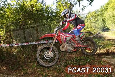FCAST 20031