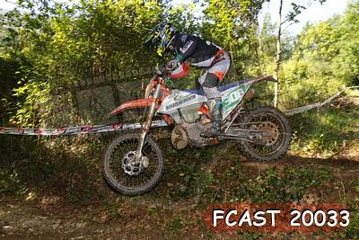 FCAST 20033