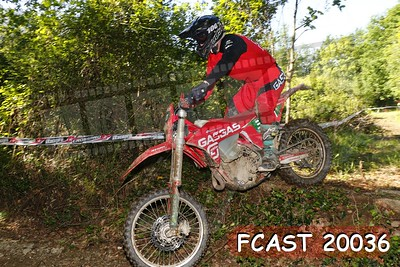 FCAST 20036