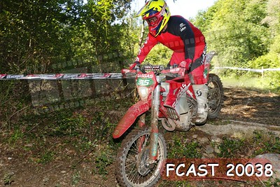 FCAST 20038