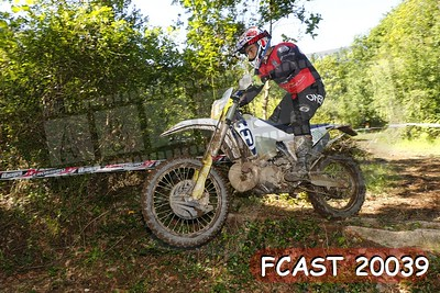 FCAST 20039