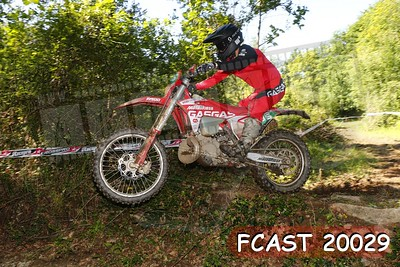 FCAST 20029