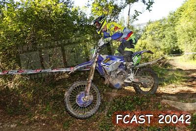 FCAST 20042