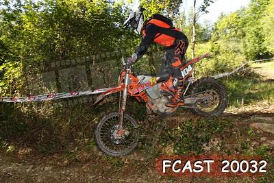 FCAST 20032