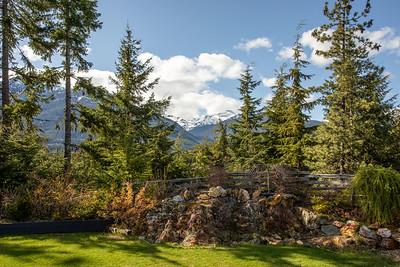 3137 Backyard View