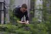 Jordan Masters<br /> WVU Green House<br /> WVU Magazine