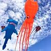 23-kite fest 2017