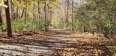 Blackwater Creek trail access