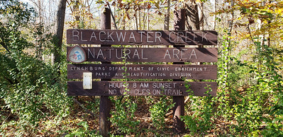 Adjacent to the Blackwater Creek Natural Area