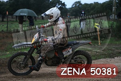 ZENA 50381