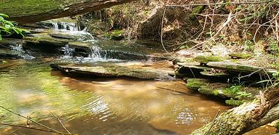Creek on Tract 1
