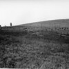 M M Hori Ranch - 1915 <br /> RE Marble - Photo <br /> MA-0168