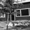 Swede Hori Ranch - 1915<br /> R.E.Marble - Photo<br /> MA-0159