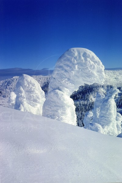 Snow Ghost on Big Mountain