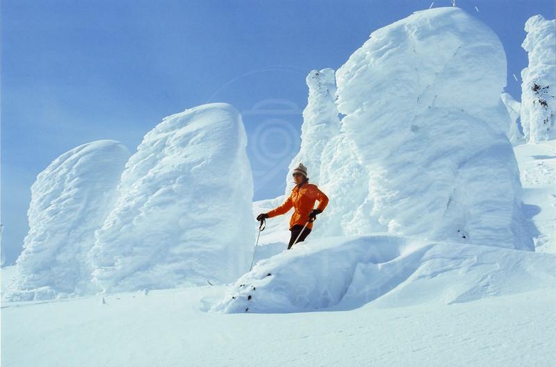 Skier in Snow Ghost