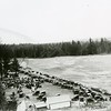 Ferde Greene Photo<br /> 8/3/1919, Old Settlers Picnic, Billy Burns Place, Columbia Falls, Montana<br /> 1292