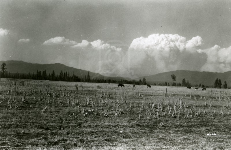 Ferde Greene Photo<br /> 7/31/1926 Huckleberry Mountain Fire<br /> 4426