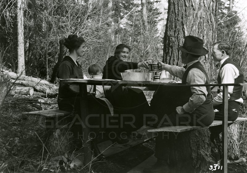 Picnic in the woods