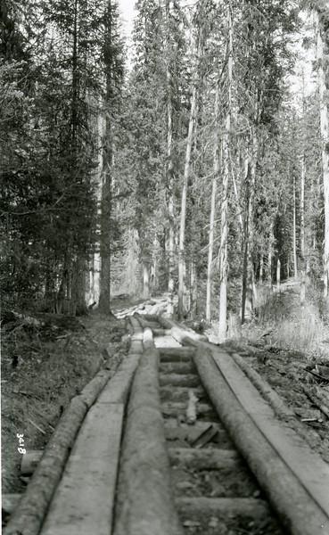 Ferde Greene Photo<br /> 4/19/1926 Echo Lake Road, Bigfork, Montana<br /> 3418