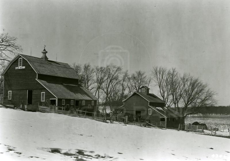 Ferde Greene Photo<br /> 2/10/1920, Barns in Oak Hill Farm, in Iowa near Marshall Town<br /> 4306
