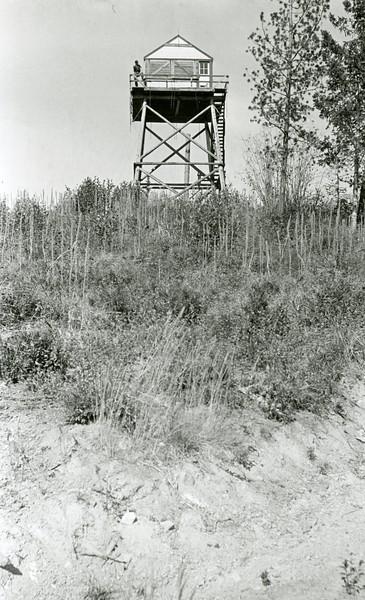 Ferde Greene Photo, 9/27/1936, F16, 1/25, Howard at Emery Lookout on Dessert Mountain