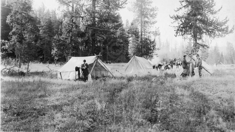 """Horse camp in Glacier park circa1920's.<br /> R E """"Ted"""" Marble Photo<br /> MA-015"""