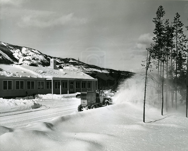 Plowing at Hungry Horse
