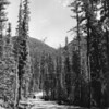 East side road of Hungry Horse during building the dam