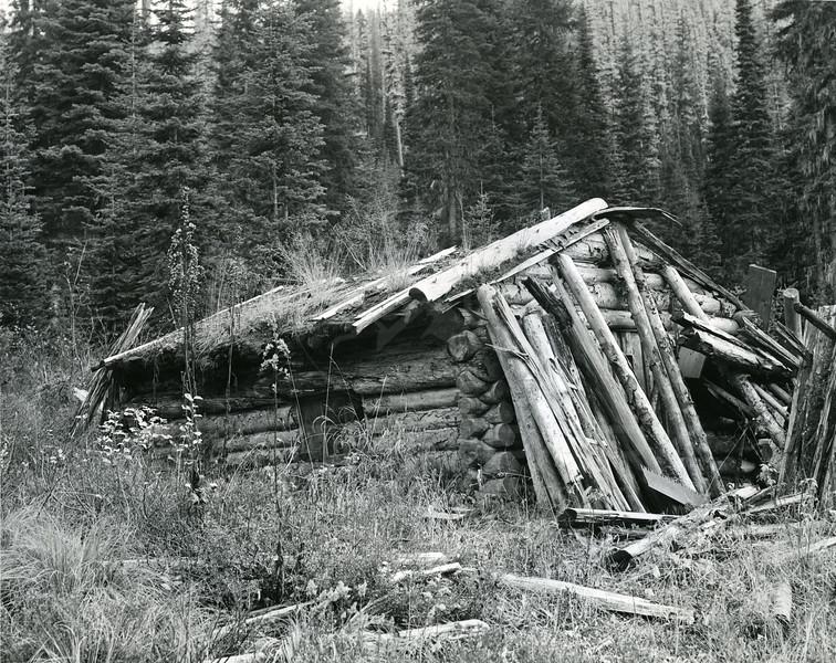 Old Cabin near the dam site