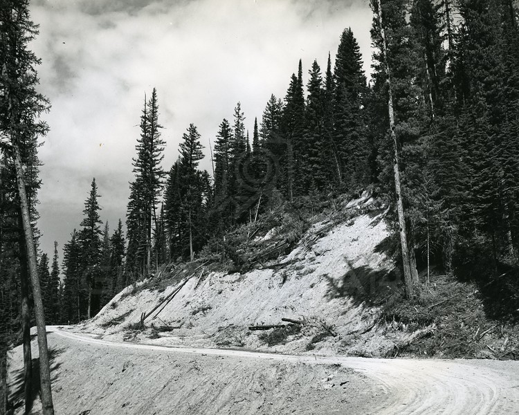 Clearing for Hungry Horse Dam