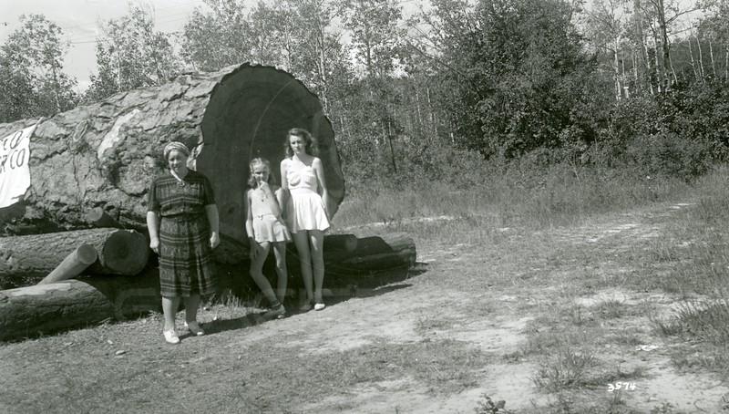 "Ferde Greene Photo, 8/14/1941, Pondarosa 6'3"", Woodland Park, Kalispell, Montana, Elizabeth Greene, Ruth Ann Greene on R"