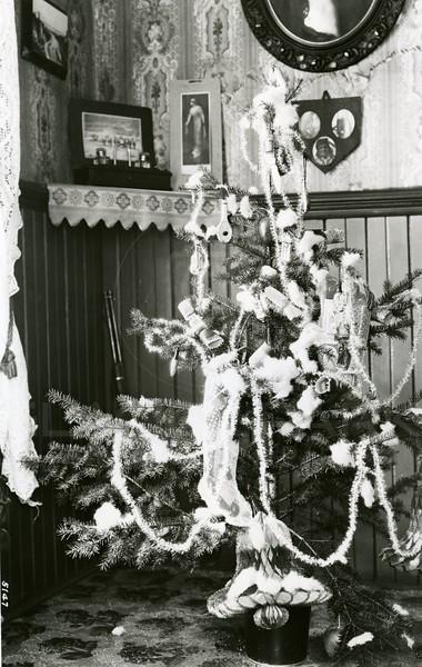 Ferde Greene Photo<br /> 1913 <br /> 5147