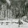 Ferde Greene Photo<br /> Bridge near Railroad Michel, BC<br /> 596