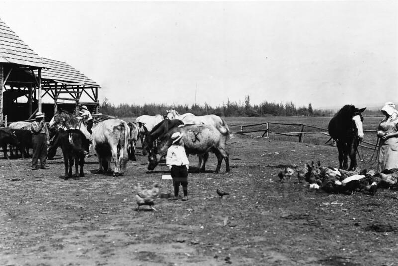 Ferde Greene Photo<br /> 6/31/1914 Shwick Farm<br /> 6187