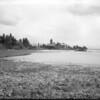 Somer Bay