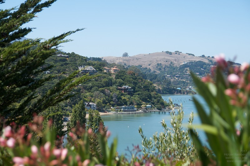 Mediterranean climate on Paradise Dr around the Tiburon peninsula