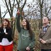 Matt Kasson points at Chestnut tree.<br /> 35214 WVU Mag American Chestnut<br /> WVU Photo/ Raymond Thompson<br /> WVU Magazine