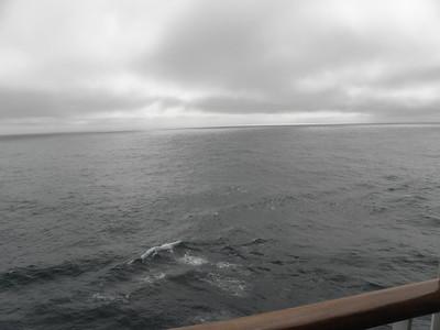 Day 11 - At sea