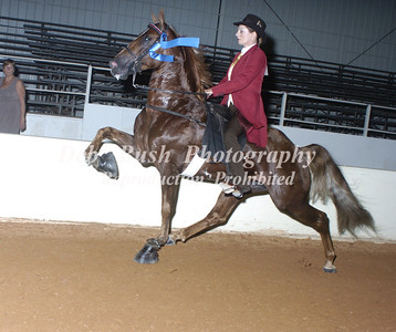 CLASS 53 RACKING- GAITED PERFORMANCE 3 & 4 YR OLD AMATEUR (PADDED ACTION DEVICE)