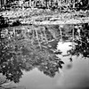Abstract Film Photography in Flint 3