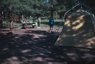 Our Camp At South Meadows Campground In Pike National Forest North of Woodland Park,  Colorado Vacation.  August, 1965